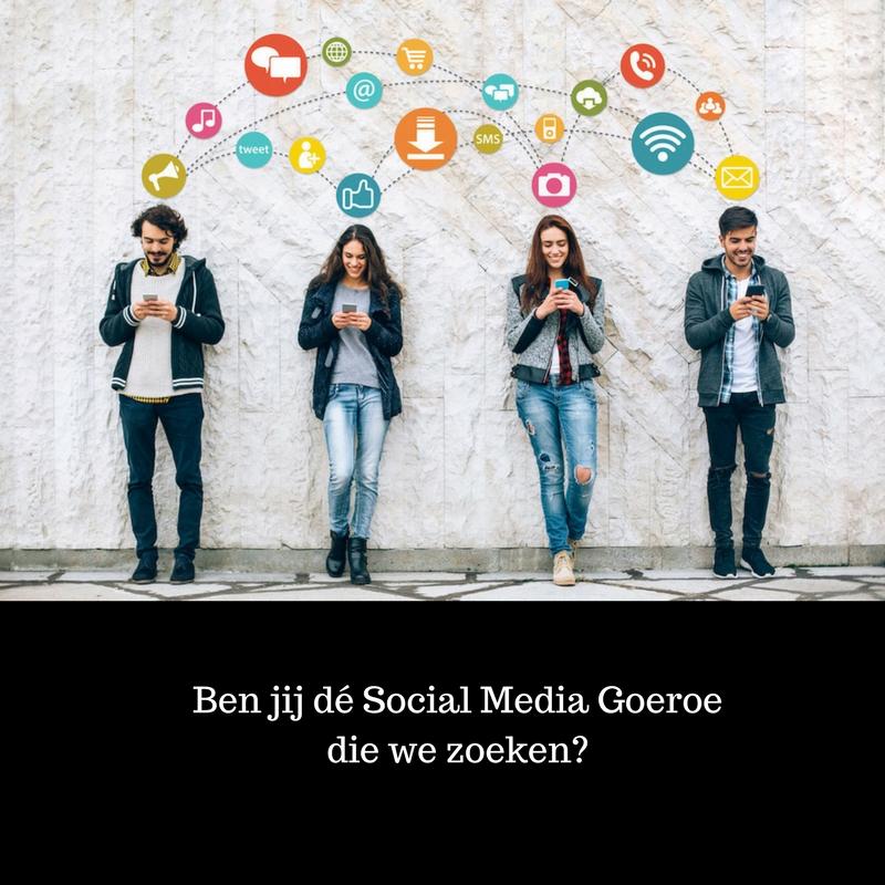 Social Media goeroe (Bloggers en Vloggers)