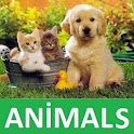 ANIMALS FOR KID icon
