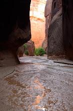 Photo: Paria Canyon-Vermilion Cliffs Wilderness, Vermilion Cliffs National Monument, Utah, Arizona USA