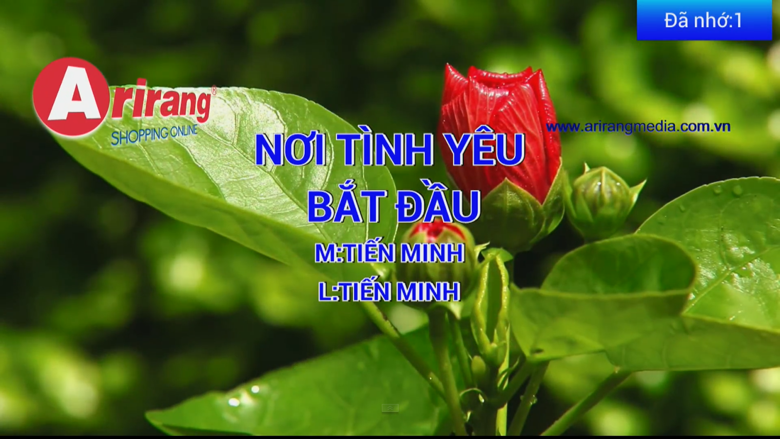Mã số Karaoke Vietnam - screenshot