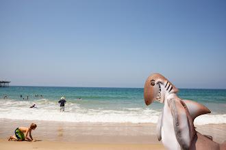 Photo: Dusky walking the Hermosa Beach/ Credit: Chris Panagakis