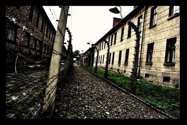 Auschwitz:i fili spinati della vergogna di mrk982