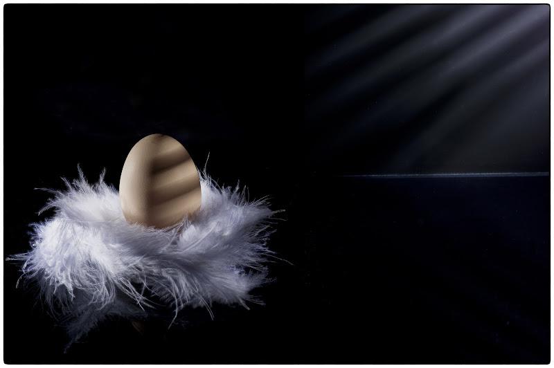 Uovo semi-grigliato di Roberto Simonazzi