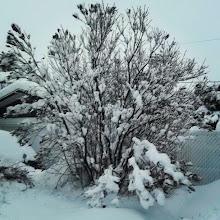 Photo: Y que viva el #invierno :)