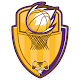 Astonishing Basketball Manager 20 Android apk