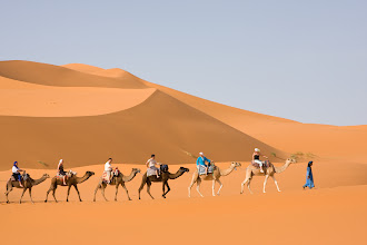 Photo: Another party of camel trekkers.