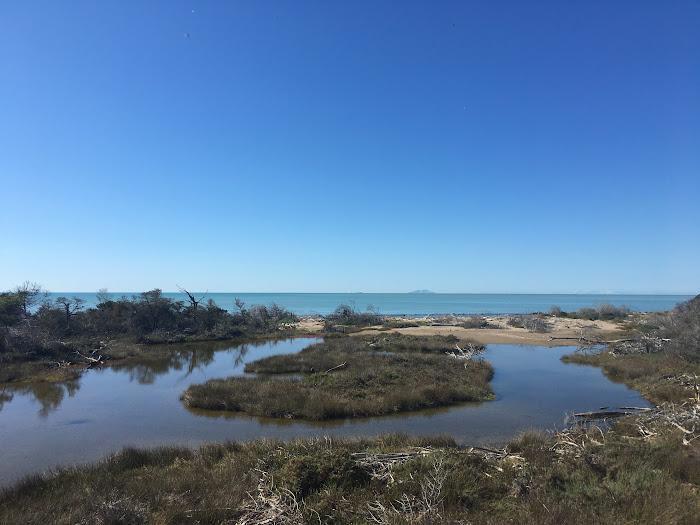 Parco naturale della Maremma, la Bocca d'Ombrone