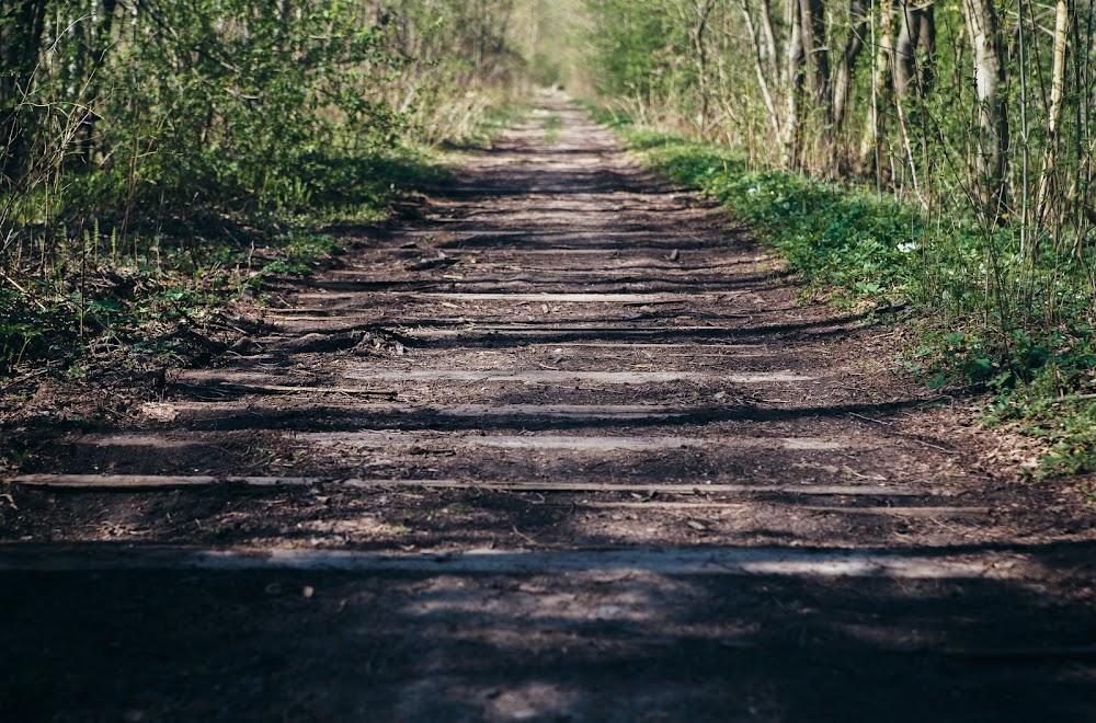 Остатки железнодорожных путей