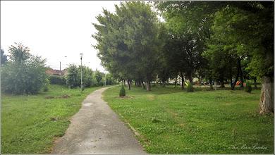 Photo: Turda - Calea Victoriei, Mr. 1, alee - parc si spatiu verde - 2019.07.15