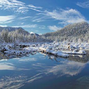 White Christmas by Pam Mullins - Landscapes Waterscapes ( reflection, wilderness, winter, canada, nature, snow,  )