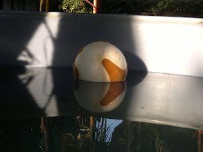 Photo: Wachsmodell im Wasserbad damit es sich nicht verzieht