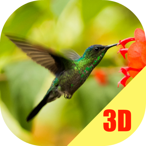 Birds Flying Live Wallpaper Apps On Google Play