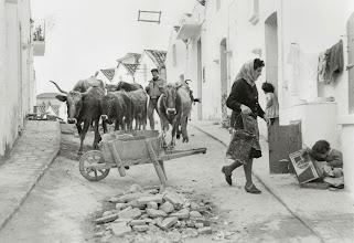 Photo: Pisticci 1960 - Foto di Mario Carbone