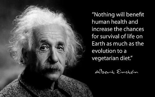 http://static1.quoteswave.com/wp-content/uploads/2013/08/Nothing-will-benefit-human.jpg