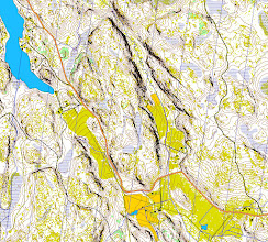 Photo: Part of a 3 km x 4 km map created automatically with Karttapullautin (http://routegadget.net/karttapullautin/) from the open laser scanning data and topographic terrain database files of the National Land Survey of Finland (www.maanmittauslaitos.fi)