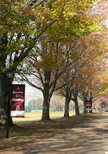 Photo: Founders Avenue looking from near the front gates towards the Roberts Field in autumn