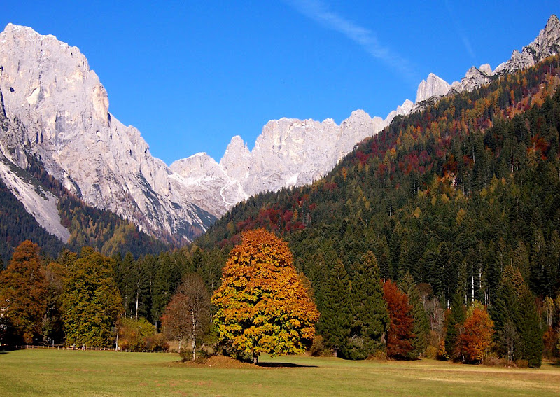 Val Canali, autunno di lucaldera