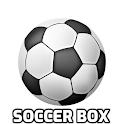 soccer box icon