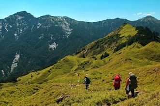 Photo: 經過滑雪山莊再往前行,路面漸縮,然後轉入狹窄的登山小徑,立即進入二、三公尺高的玉山箭竹林及挺直蔽天的台灣冷杉林。進入冷杉林之後,時而上坡時而下坡,翻過幾個小山頭,穿過幾片冷杉林後,最後到達一片廣袤的玉山箭竹原,層層山坡起伏如波浪一般,這便是「小奇萊」。