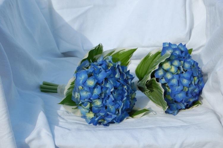 Букеты голубых гортензий