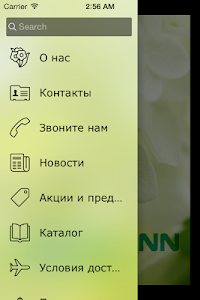 mirra-NN screenshot 1