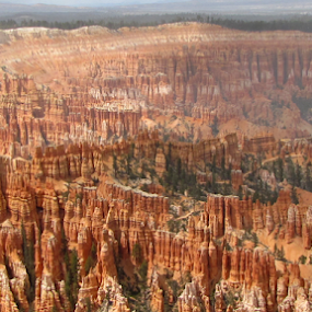 Bryce by IS Photography - Landscapes Caves & Formations ( bryce, utah'red'sandstone', canyon )