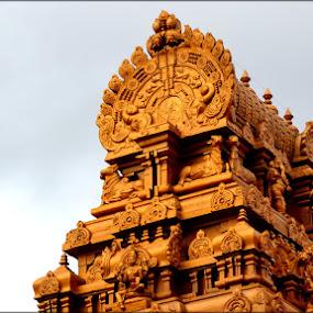by Vijayendra Venkatesh - Buildings & Architecture Architectural Detail