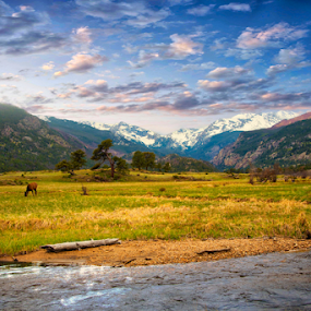 Rocky Mountain Meadow by Jim Signorelli - Landscapes Mountains & Hills ( serene, rocky mountains, colorado, meadow, meadows )