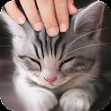 Pat the Cat Simulator icon