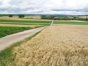 Photo: 4eDag, zondag 19 juli 2009: Sankt Goar - Leeheim Afstand totaal: 90,7 km, Totaal gereden 390 km.