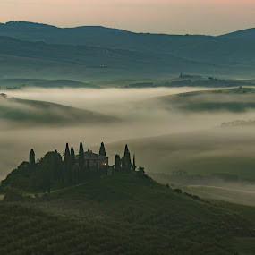 Tuscan Dawn by Ryan Inhof - Landscapes Mountains & Hills ( vineyard, sunrise, olives, rolling hills, tuscany, olive grove, podere belvedere, italy, fog )