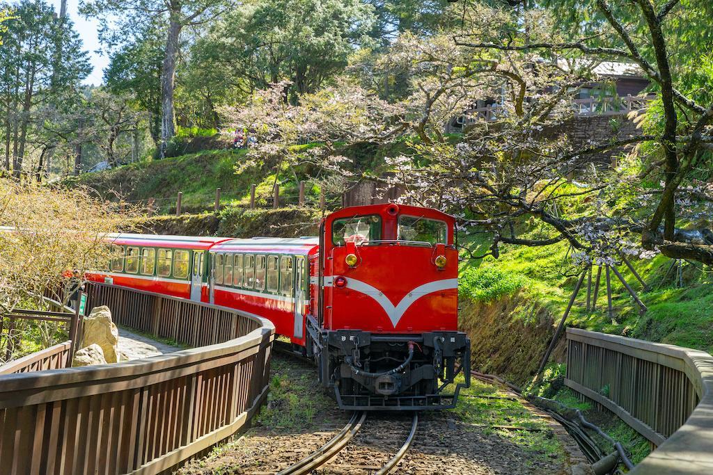 阿里山森林鐵路 台灣鐵道旅行 台灣火車旅行