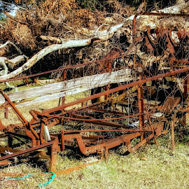 Rusted Spreder by Dave Walters - Artistic Objects Antiques ( farm, farm tools, rusty, antiques, bob & louise's farm,  )