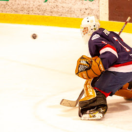The puck! by Yves Sansoucy - Sports & Fitness Ice hockey