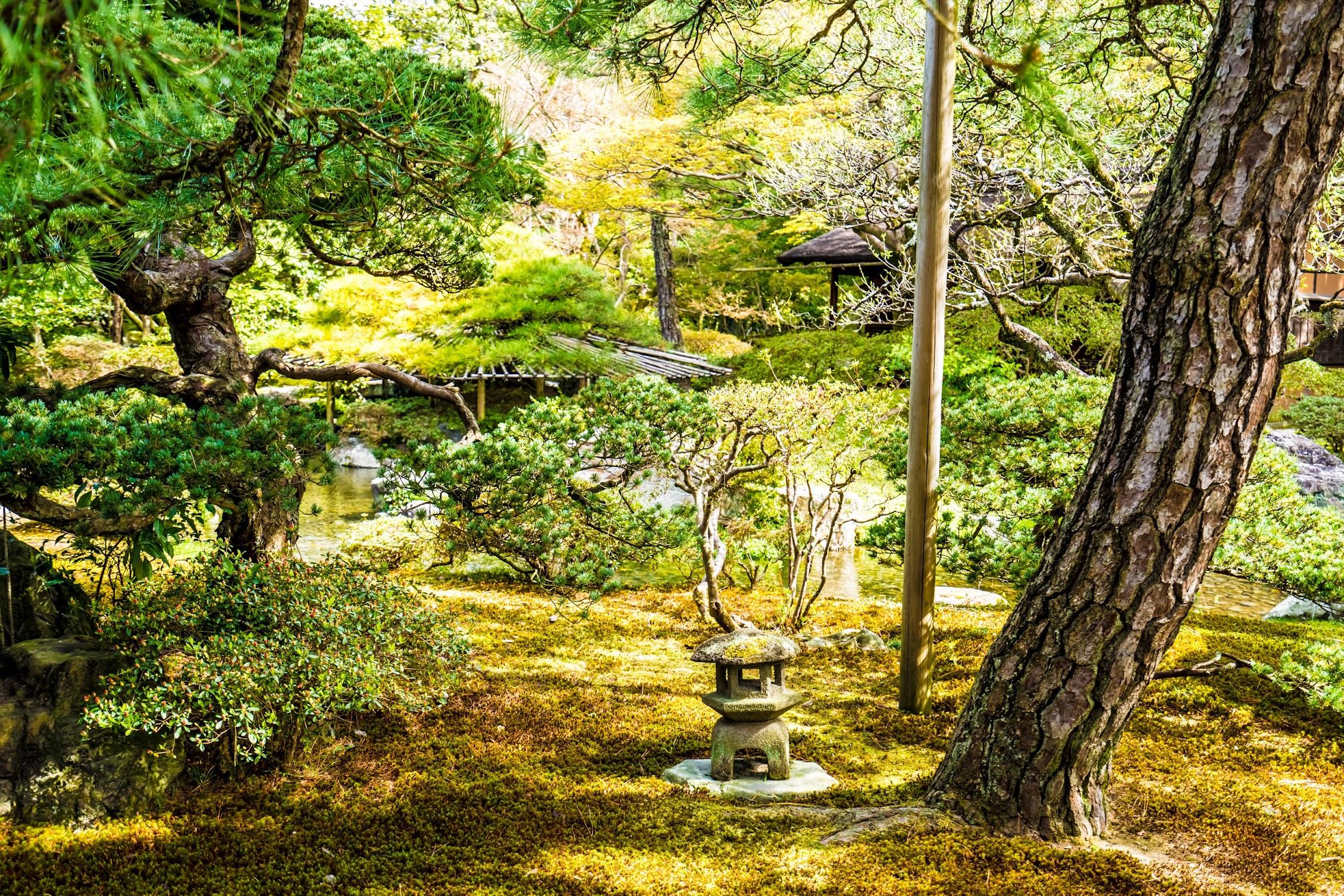 京都御所 御池庭5