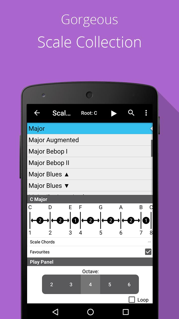 Piano Chords, Scales, Progression Companion PRO Screenshot 4