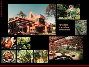 Photo: Sustainability: Meghiddo Studio/Residence/Agro-garden