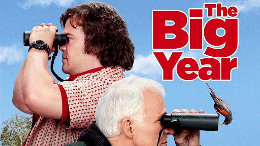 Image result for the big year  movie
