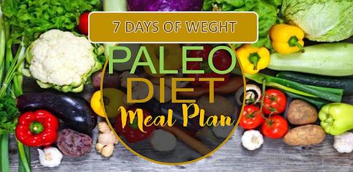 paleo diet viktminskning