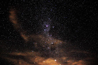 Photo: Southern Cross and More