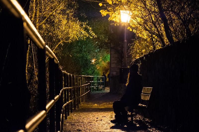Sentiero di ombre e di luci di alessandro_termini