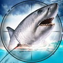 Underwater Shark Hunting- Free Shark Games 2020 icon