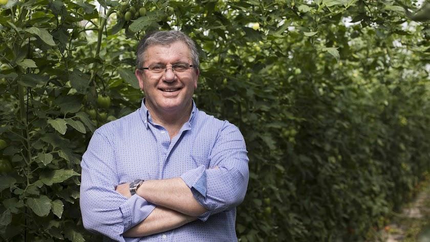 Juan Antonio González, nuevo presidente de Vicasol.