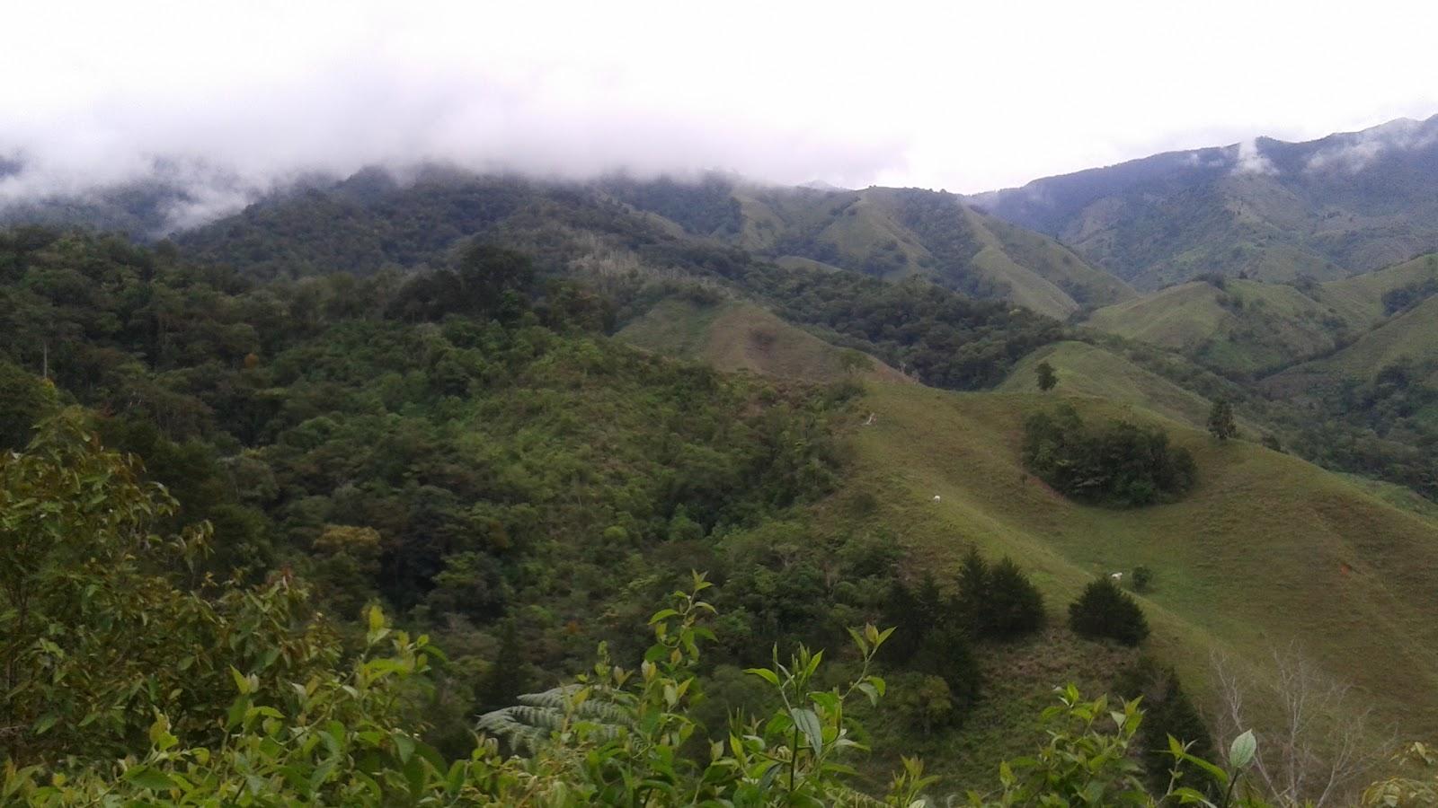 paisaje4.jpg