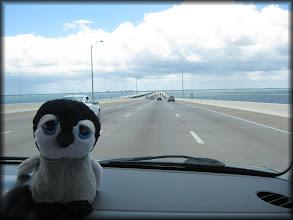 Photo: Crossing Tampa Bay heading into St. Petersburg, Florida.