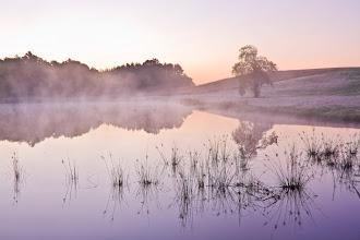 Photo: Sunrise on a small pond, Hill Road, Lyman, Maine