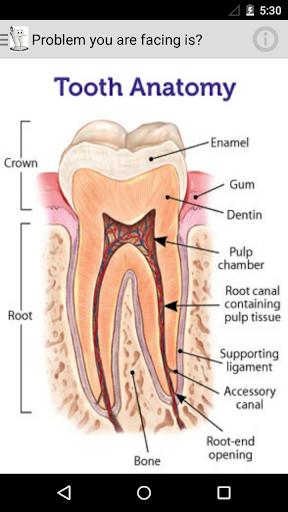 Dental Desk