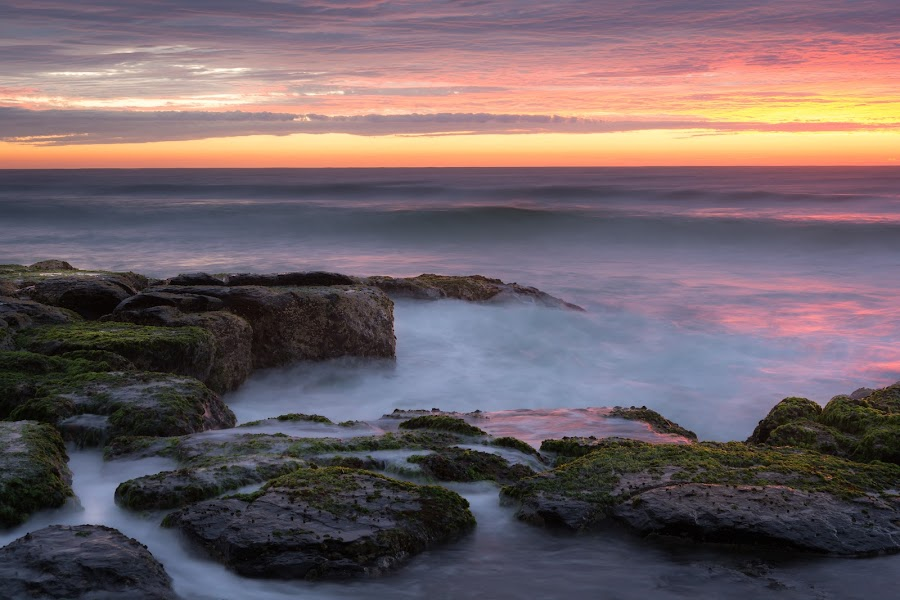 Morning Burn by Matthew Wood - Landscapes Waterscapes ( sky, australia, sea, ocean, beach, seascape, sunrise, rocks )