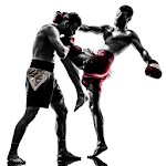 Muay Thai Video Lessons Pro