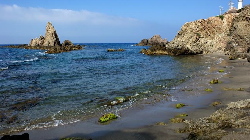 El Parque Natural Cabo de Gata Níjar, ofrece numerosas posibilidades para disfrutarlo en familia